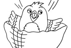 Happy Canary Bird Coloring Pages : Best Place to Color