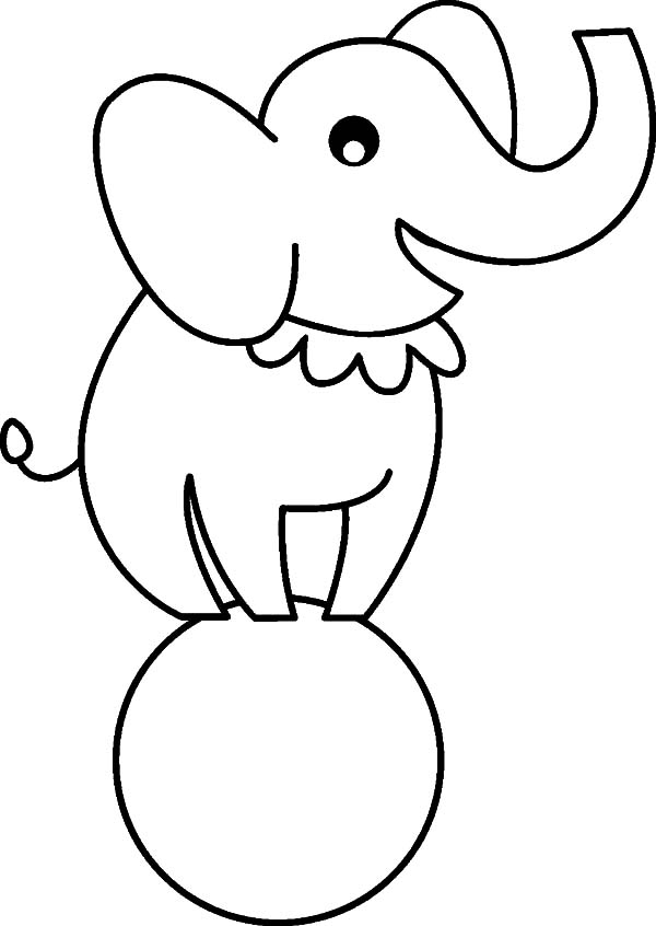 Circus Elephant Outline Coloring Pages : Best Place to Color