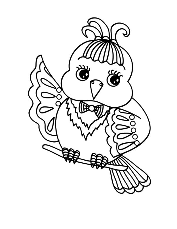 Find the Best Coloring Pages Resources Here!