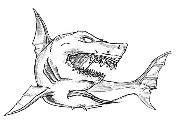 Shark Jaws Sketch Coloring Pages: Shark Jaws Sketch