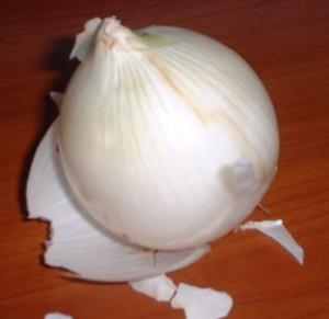 La cipolla ha gli strati