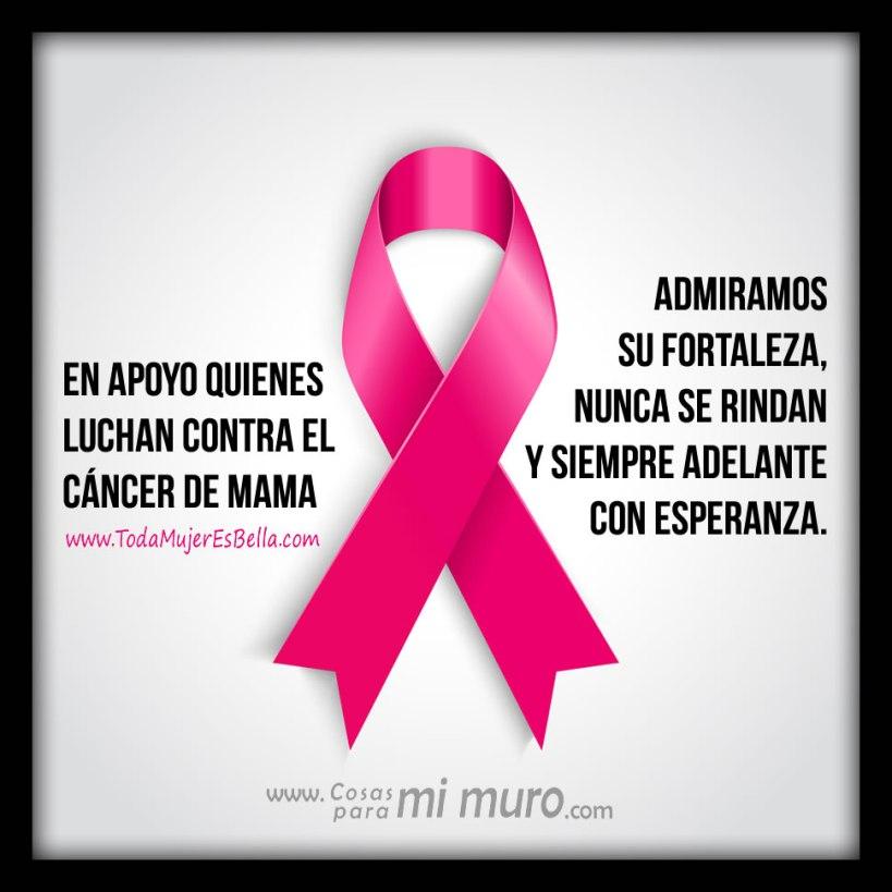 Apoyo contra el cáncer de mama