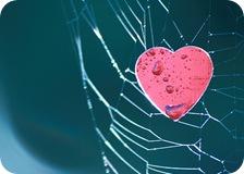 Adictas al amor