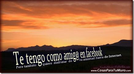 Amigos dentro y fuera de facebook