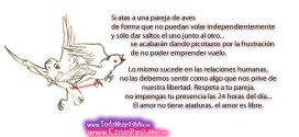 amor_sin_imposicion-other