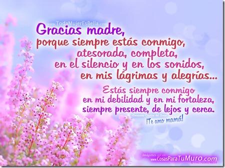 Gracias Madre Poemas gracias madre, te amo