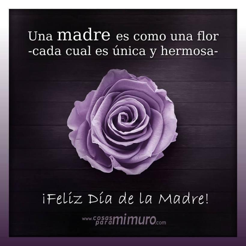 ¡Feliz Día de la Madre! Una madre es como una flor