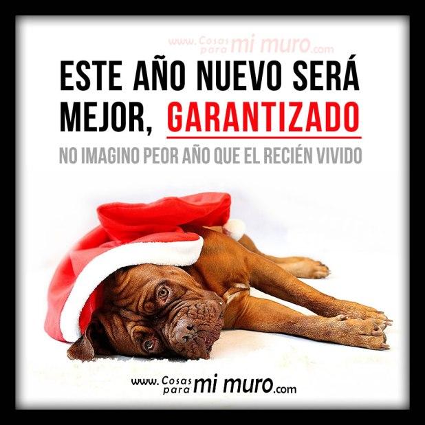 Mejor año nuevo, GARANTIZADO