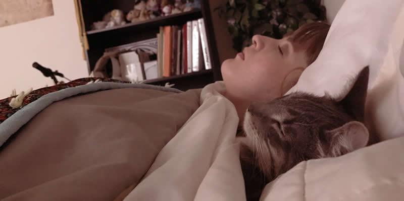 Los ronronos del gato son buenos para tu salud