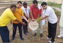 101 saplings planted on birthday