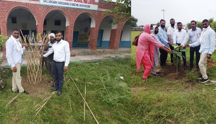 Pledge to plant 200 saplings on birthday