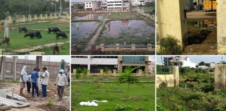 MLA's son uprooted tree guard, audio viral