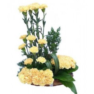 Arrangement Of 20 Yellow Carnations1