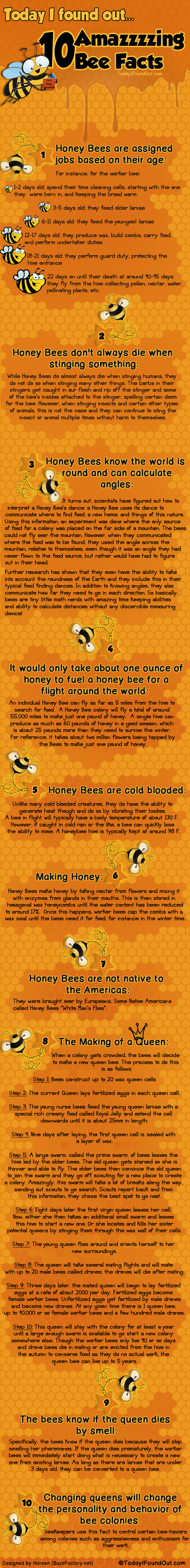 10 Amazzzzing Bee Facts Infographic