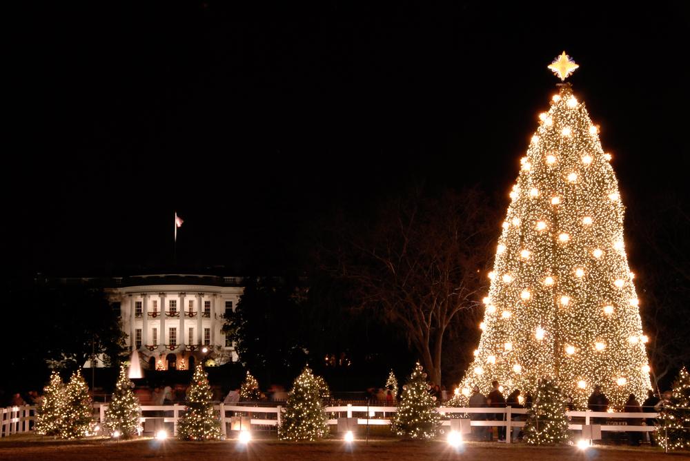 National Christmas Tree Lighting