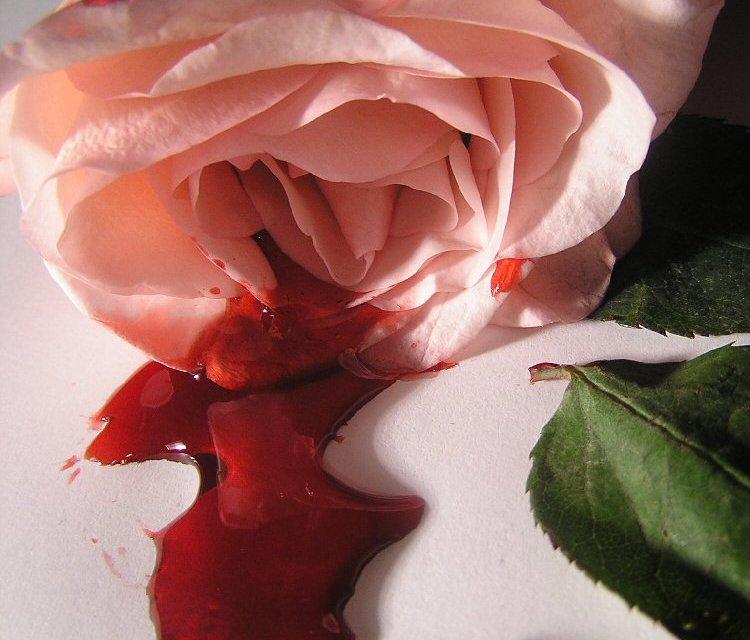 Blood. Lust.