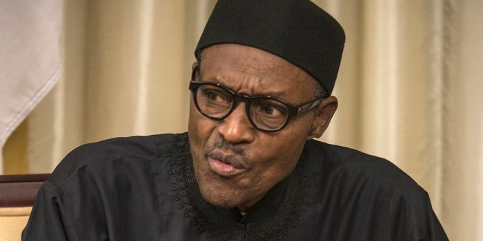 Does Buhari really know what is going on with the TSA(opinion)