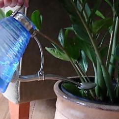 Kitchen Sink And Faucet Shabby Chic Stools Tips On How To Water Houseplants | Today's Homeowner