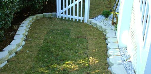 How to Keep Sod Lawns Alive After Planting  Todays Homeowner