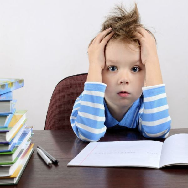 A Principal's Reflections: Stop the Homework Insanity and ...