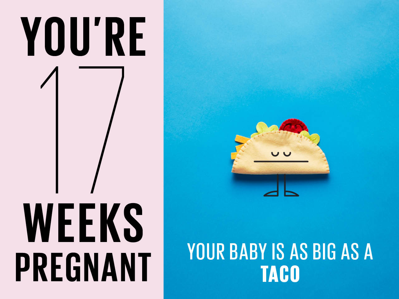 hight resolution of felt taco used to show how big baby is at 17 weeks