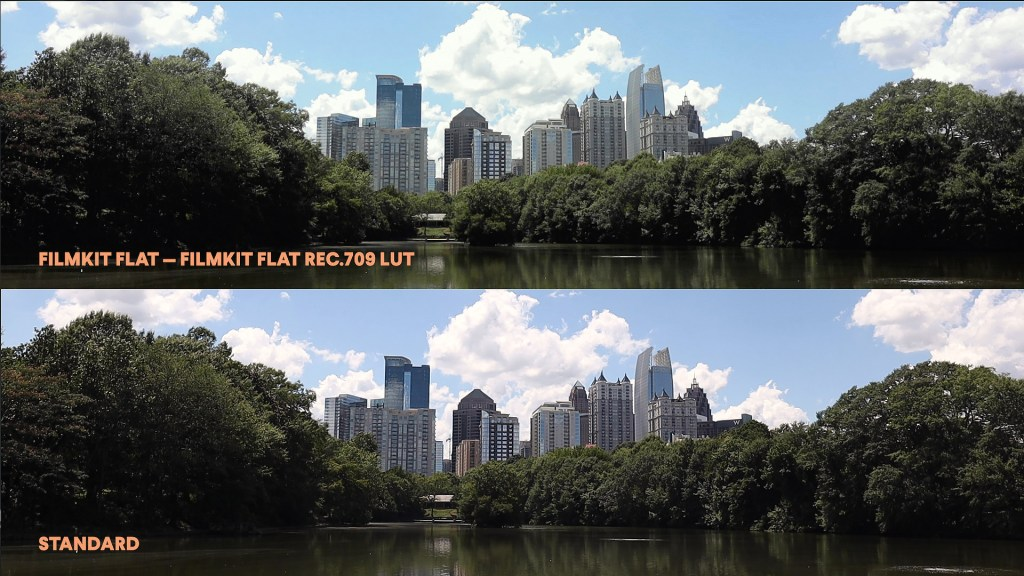 FilmKit Flat and Standard Picture Styles