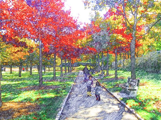 Brooklyn Botanic Garden - cherry esplanade