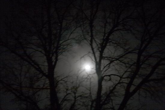 """Moon Frame"" - Copyright 2014 Todd Littleton"