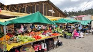 Farmer's market near us