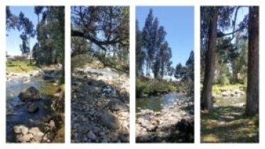 Yanuncay River Walk