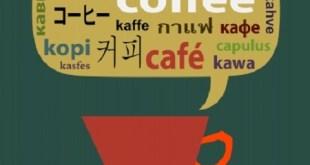 Cómo aprender un nuevo idioma