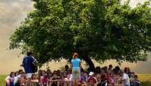 Chicos bajo un árbol