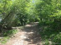Ashbridges Bay Park Trail