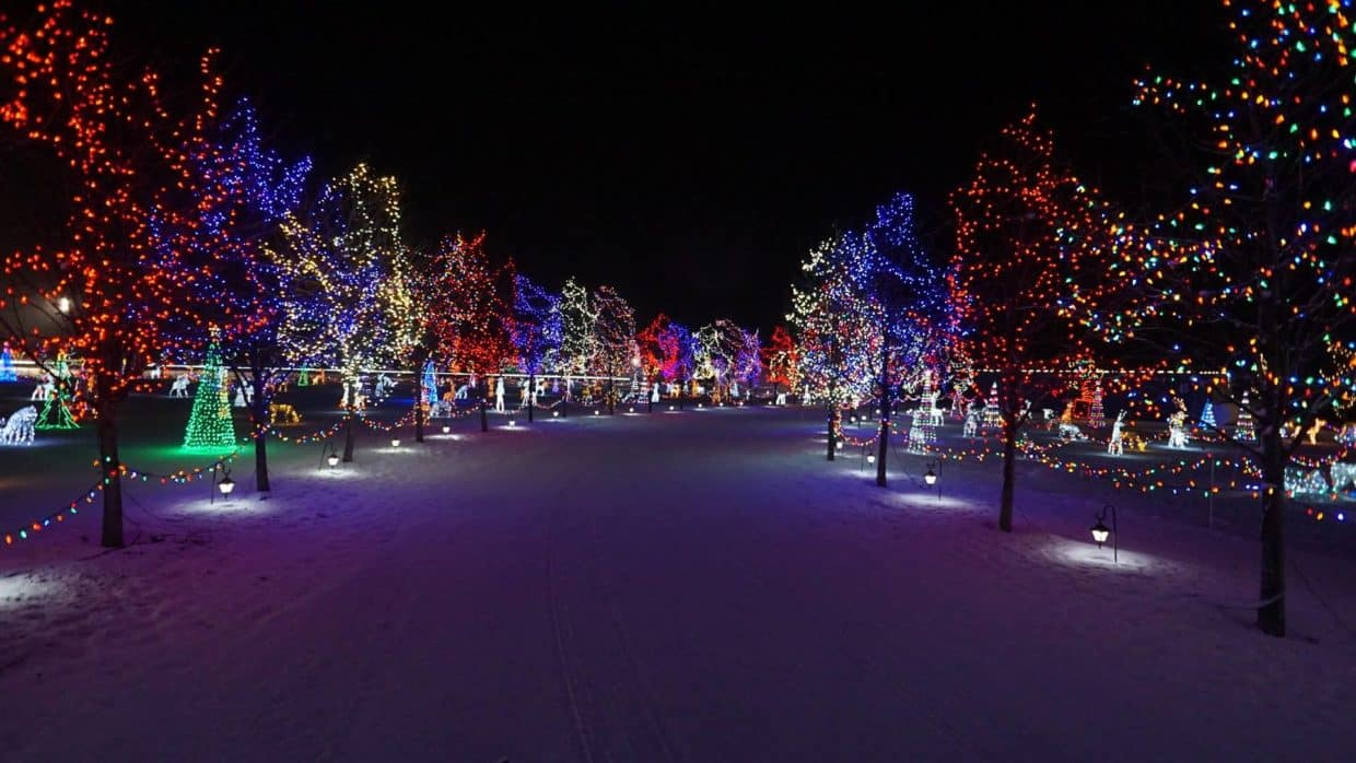 Christmas Light Display Leduc
