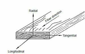 eje de referencia de la madera