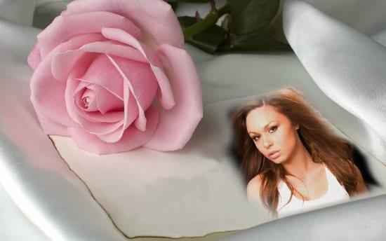 Fotomontaje De Papel Y Rosa