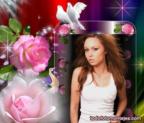 Crear Fotomontajes Con Rosas Y Palomas