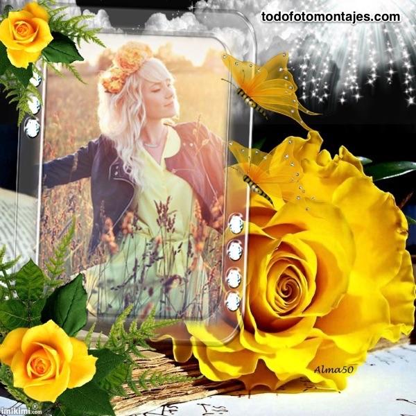 Fotomontajes Hermosas Rosas De