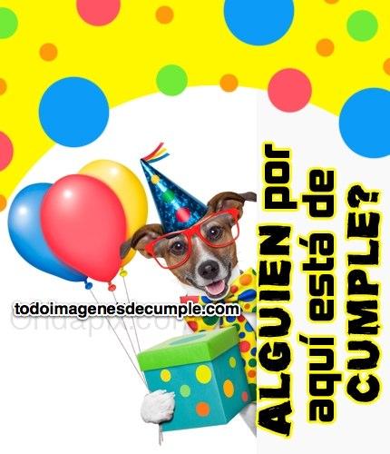 imagenes de cumpleaños con perrito