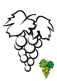 Racimo de uvas - TodoPaps