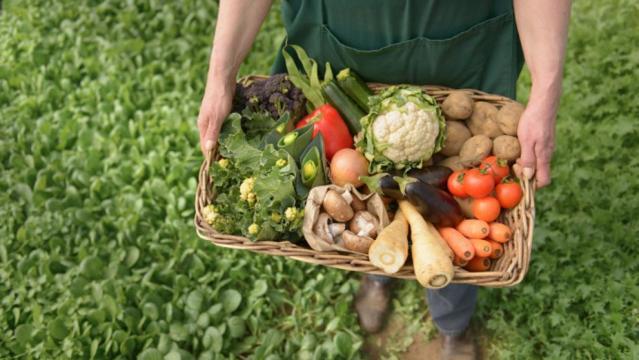 Beneficios de consumir productos cultivados de forma orgánica