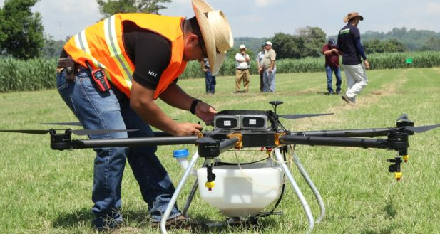 Drones y avionetas: Nuevas tecnologías para fumigar cultivos de arroz
