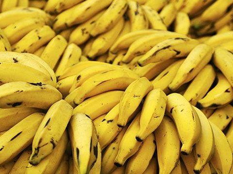 datos curiosos e interesantes sobre el platano y banano