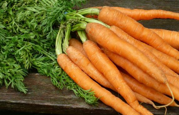 Top 10 países productores de zanahoria