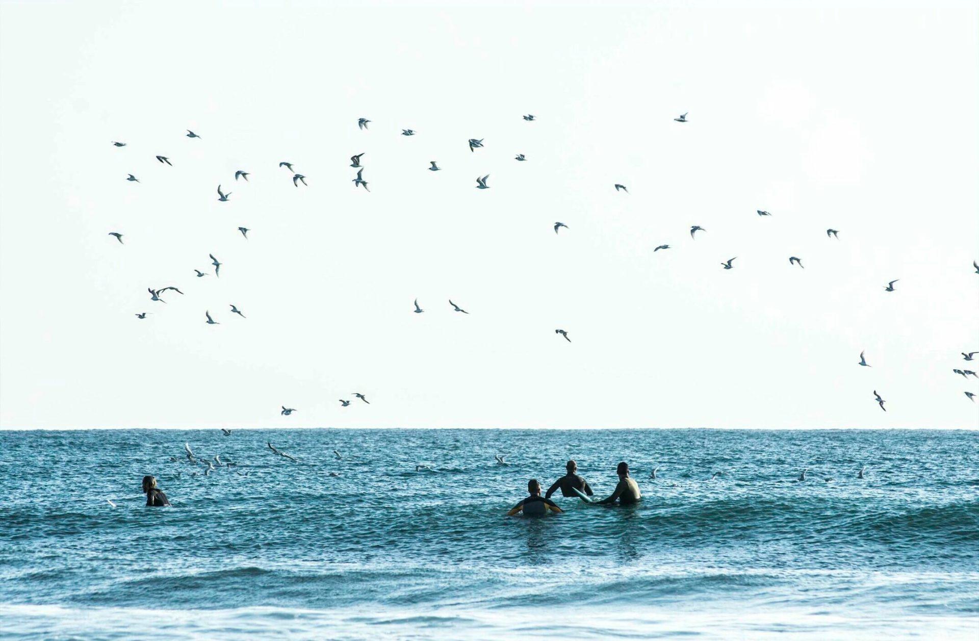 fotografías surf