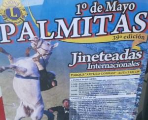 Afiche Jineteadas en Palmitas
