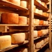 queso_colonia2