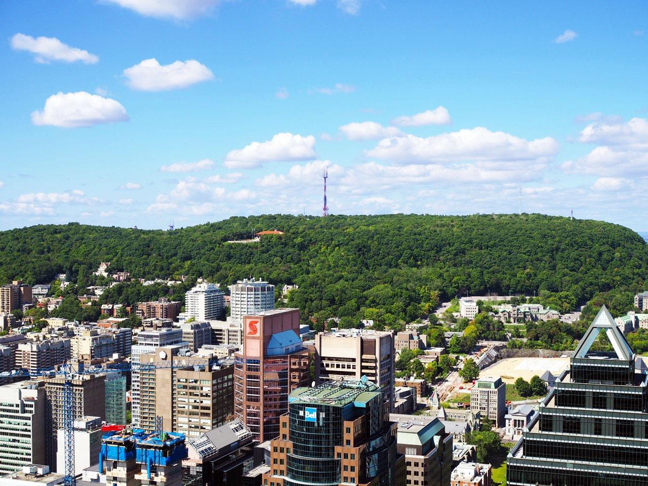 observation deck in montreal