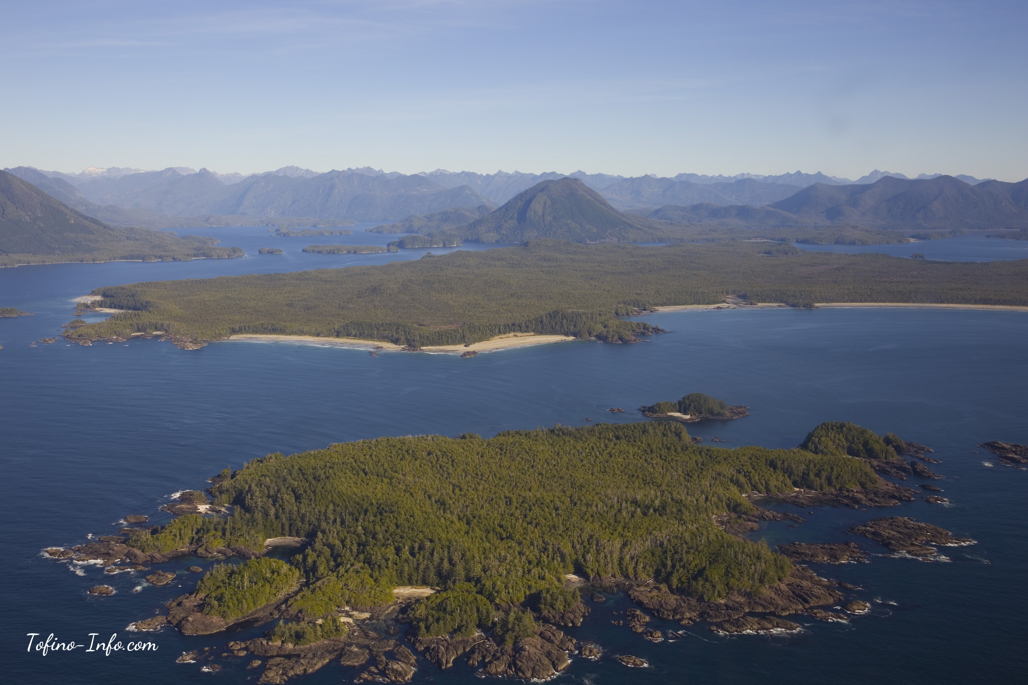 Top 10 Things To Do In Tofino BC Surfing And More