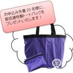 shinsyun-bag